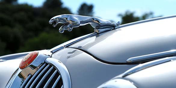 bilförsäkring för Jaguar